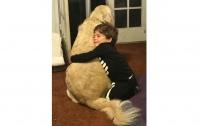 Дружба мальчика-аутиста и собаки растрогала пользователей соцсетей