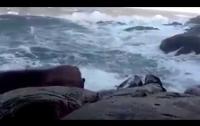 Любителей селфи смыло на берегу со скалы (видео)