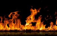 Заметали следы: убийцы женщины в Киеве устроили масштабный пожар (видео)