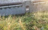 Во Львове поезд насмерть сбил женщину
