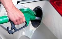 Цена бензина в Украине растет в бешеном темпе