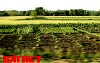 В Киевской области в 2012 году проданы более 14 тысяч участков