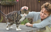 Престарелый кот вернулся домой спустя 13 лет скитаний (видео)