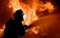 На столичном рынке произошел пожар