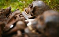 Останки древних людей неизвестного вида обнаружены на Филиппинах