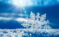 Зима на пороге: в России выпал первый снег