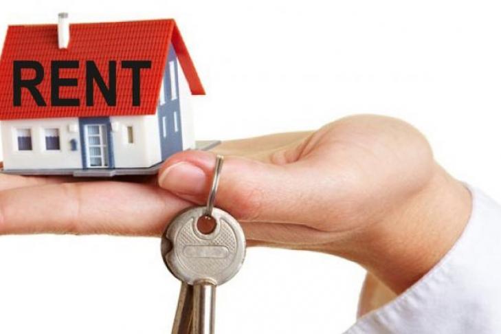 Власти обратили свое пристальное внимание нарынок аренды жилья: чего ждать