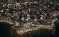 Число жертв пожаров в Греции превысило 90 человек