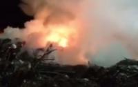 Ночью в Киеве загорелась свалка около Берковецкого кладбища (видео)