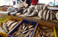 Тюремщики скупили рыбы на миллиард по ценам выше рыночных