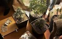 Наркоторговец в Киеве не смог реализовать свой товар