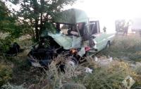 На Киевской трассе произошло ДТП: погиб один человек, еще семь в больнице
