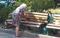 Радикальная бабуля исортила городское имущество ради своего спокойствия