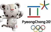 На время проведения Зимних Олимпийских игр в Google вводит ряд дополнительных функций