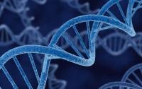 Прорыв в медицине: ученые изменили гены в человеческом эмбрионе
