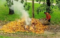 Медик рассказал, как людям уберечься от токсичного дыма из-за безответственных поджигателей