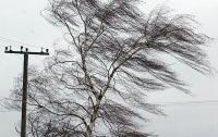 Сильный ветер сдул с рельсов поезда в Канаде (видео)