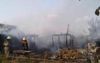 Сжигали траву: под Киевом трагически погибла пара