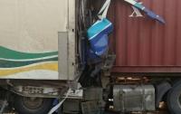 Смертельное ДТП на трассе Одесса-Киев: столкнулись две фуры
