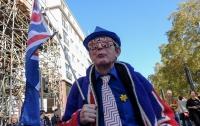 Сторонники выхода Британии из ЕС вышли на акции протеста (видео)