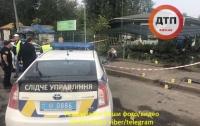 Женщина погибла под колесами авто в Киеве: виновник попытался сбежать