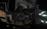 Под Киевом столкнулись грузовики, сильно пострадал мужчина
