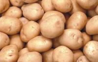 Прекратить панику: гречки и картошки хватит на всех