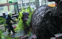 На Тайвань обрушился супертайфун