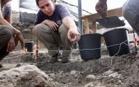 Крупную стоянку Homo erectus нашли в Израиле