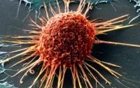 Онкологи определили самые действенные способы профилактики рака