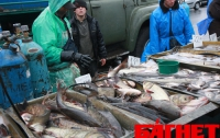 За год рыба в Украине подорожала на 30%