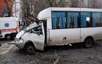 Дерево упало на маршрутку, пострадали дети (видео)