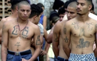 Власти США предъявили обвинения 3800 участникам крупнейших международных банд