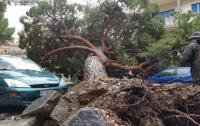 Количество жертв наводнений в Италии увеличилось до 30 человек