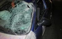 Трагическое ДТП в Киеве: под колесами Honda погиб мужчина
