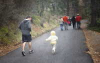 Пешие прогулки помогут избежать инсульта