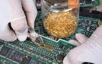 Извлекает золото из мусора: ученые создали уникальное вещество