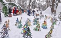 Поляну с необычными елками открыли в центре Киева