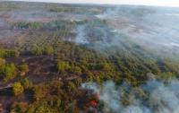 В Черкасской области пятые сутки тушат торфяной пожар