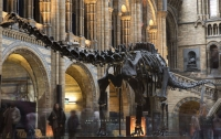 Британские музеи потеряли экспонаты на миллион фунтов