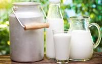 Украинцы стали больше пить молока