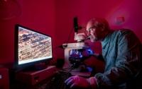 Медь предотвращает распространение вирусов - исследование