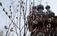 В вербное воскресенье в Украине дожди, усиление ветра и заморозки