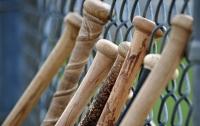 В Пенсильвании учителям раздали биты, на случай противостояния стрелкам