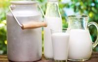 В Украине ожидается стабилизация цен на молоко