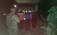 Украинцы пытались вывезти в Россию тонны меда, их остановили выстрелами