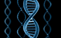 Нобелевскую премию по химии присудили за изучение ДНК