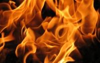 На Киевщине произошел сильный пожар на фабричных складах (видео)