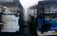 В Борисполе дотла сгорели два автобуса