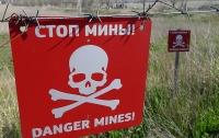 О начале разминирования территорий на Донбассе договорились в Минске